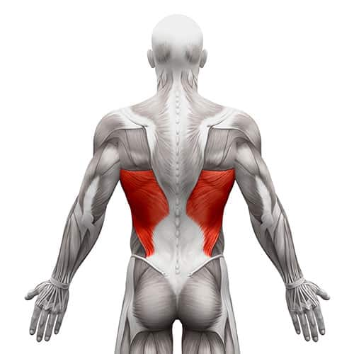 Latissimus Dorsi Tear Surgery in Chicago